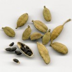 Kardamom, Elettaria cardamomum