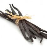 Vanilija, Vanilla planifolia