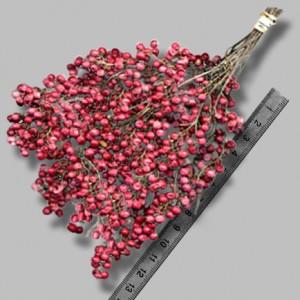 Crveni papar, Schinus molle