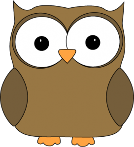 cute-brown-owl