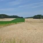 Unedogled obrađena polja
