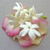 Tečaj kreiranja prirodnih parfema